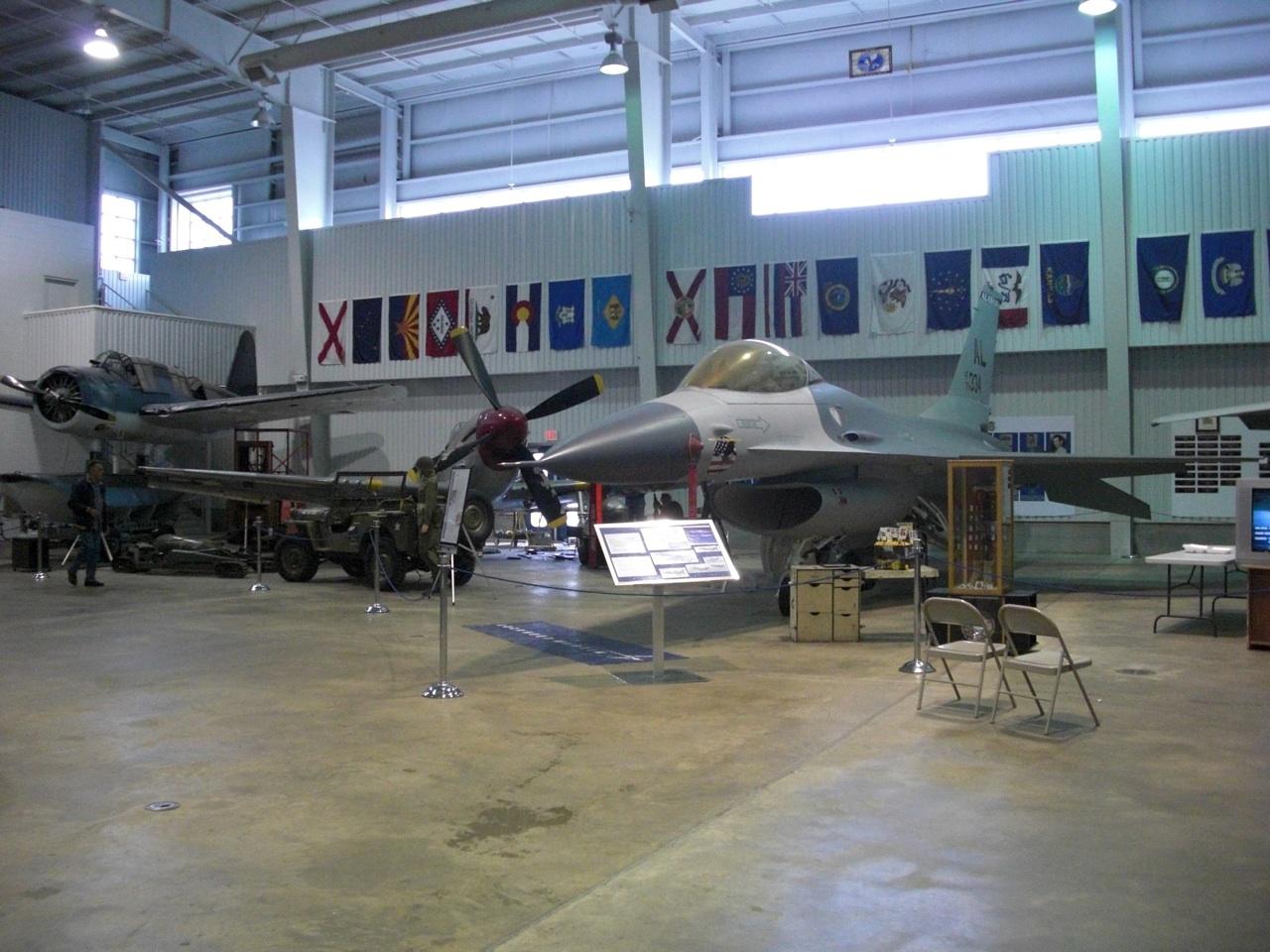 Tomcat Plane
