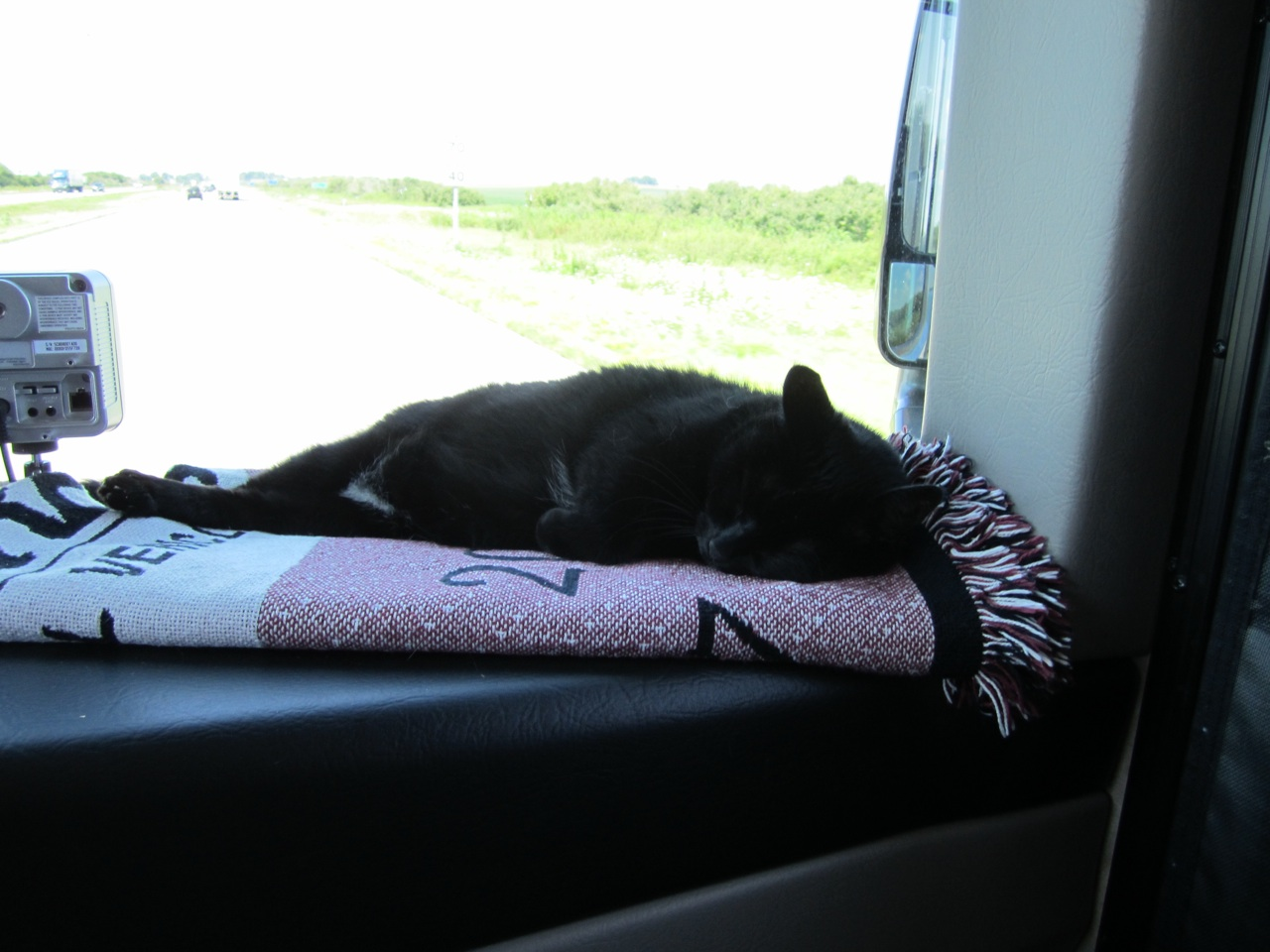 Angel Sound Asleep In Front Window As We Drive To Amana, Iowa