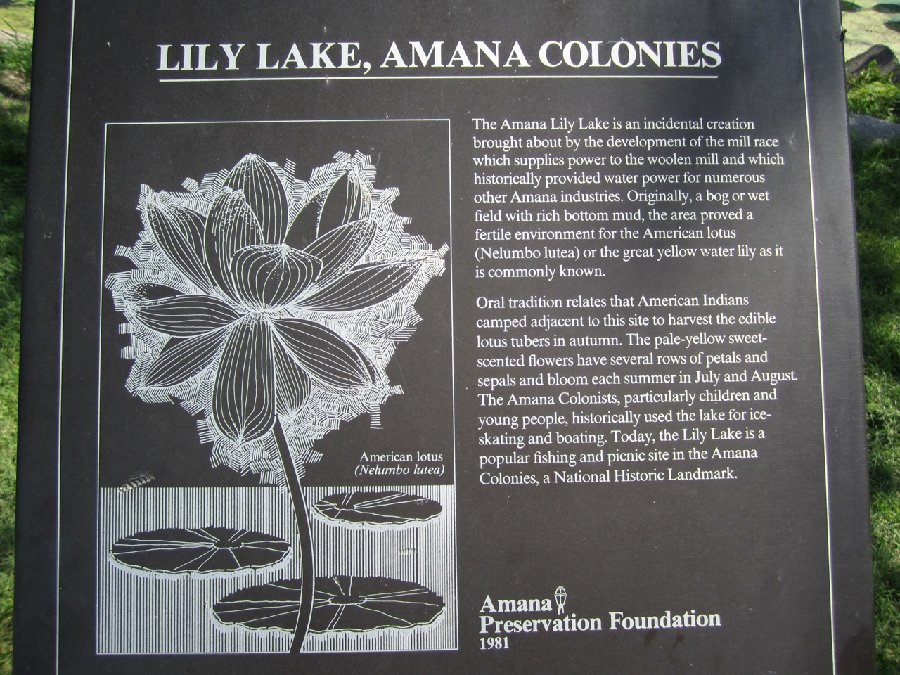 Lily lake in amana iowa outside our bubble plaque giving information on lily lake izmirmasajfo