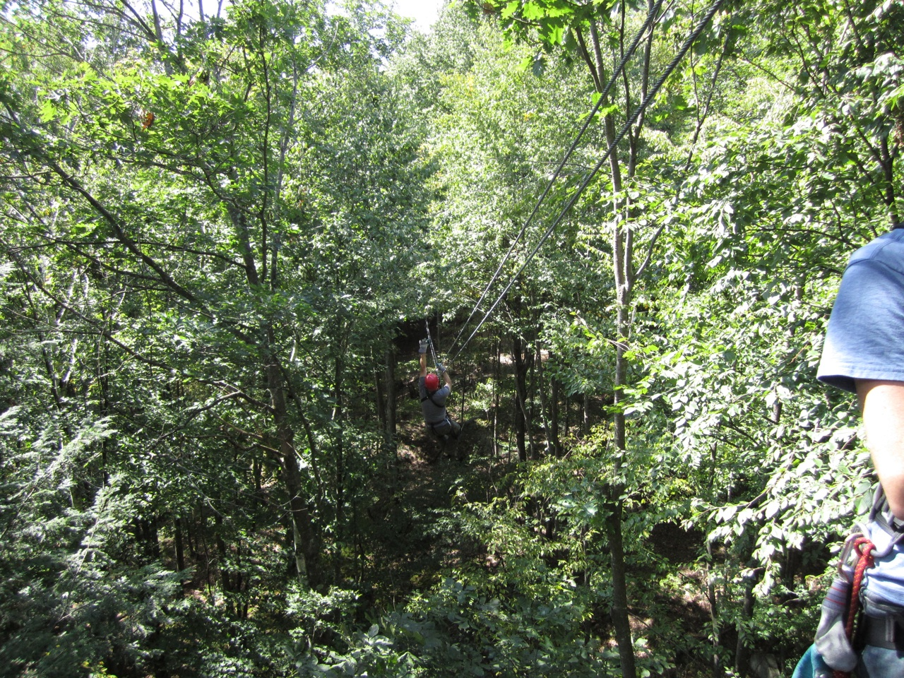 Jonathan Zipping Through The Forest