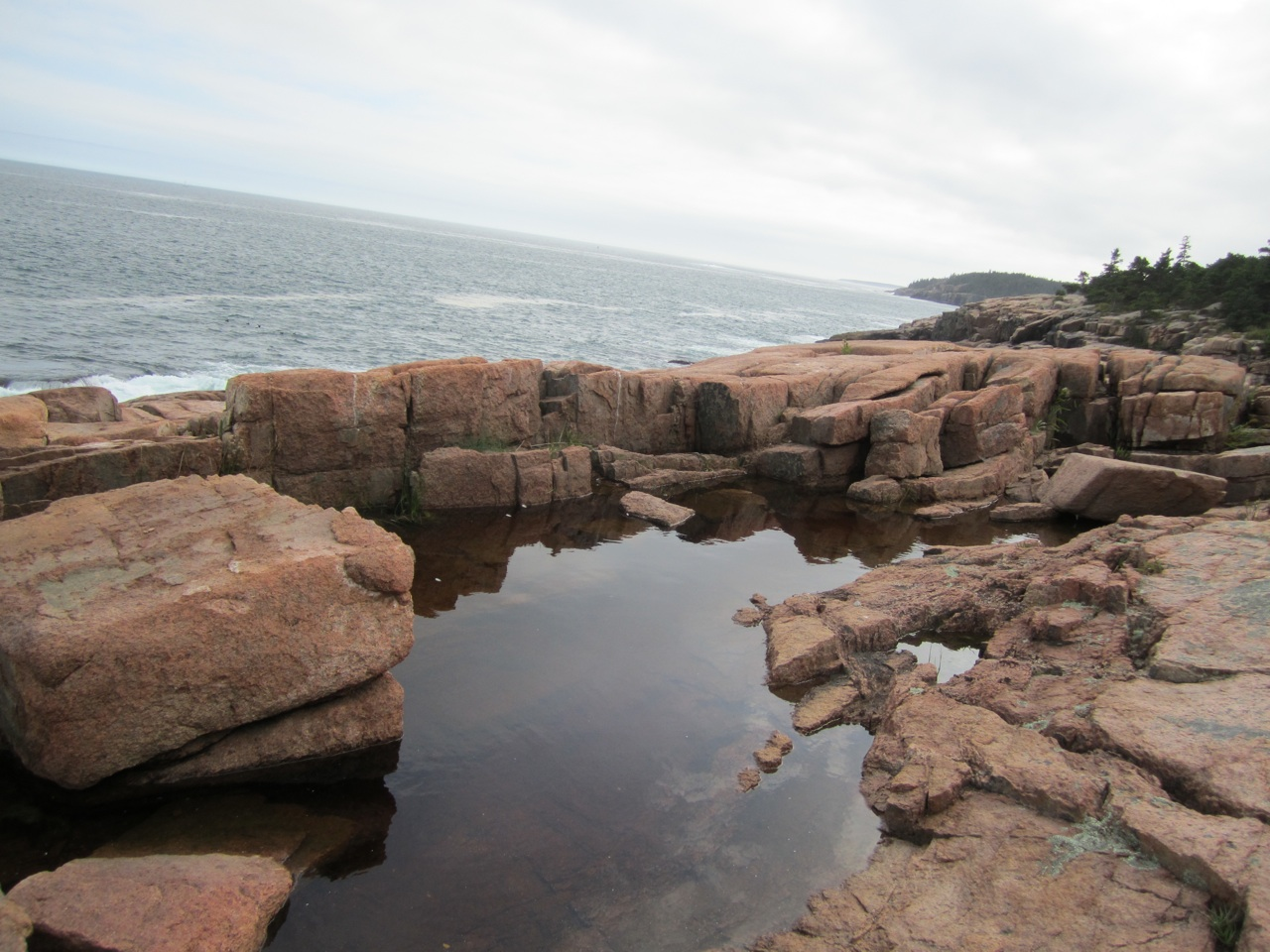 Tide Pool Found On Hike