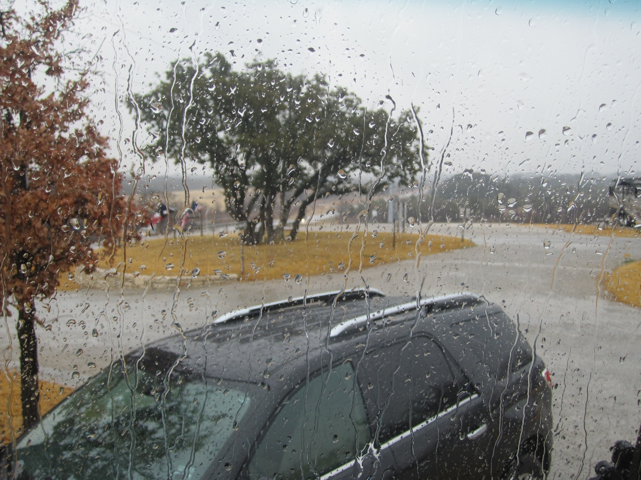 Rainy Day, Christmas Eve 2010, Granbury, TX