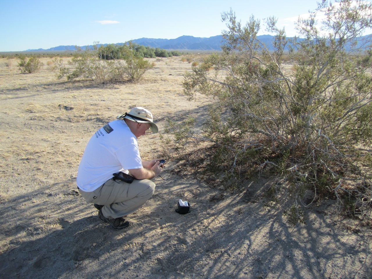 David Found A Cache In The Desert