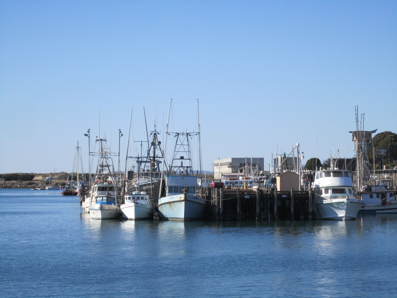 Some Of The Fishing Boats At Morro Bay