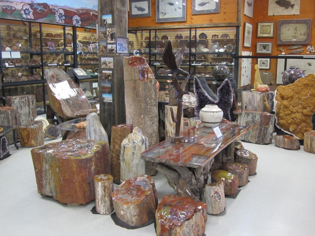 Inside Jim Gray's Petrified Wood Co. Shop