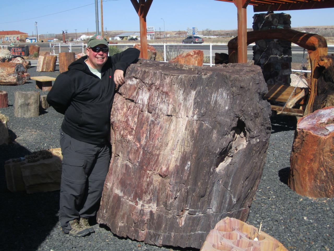 David And A Giant Petrified Log