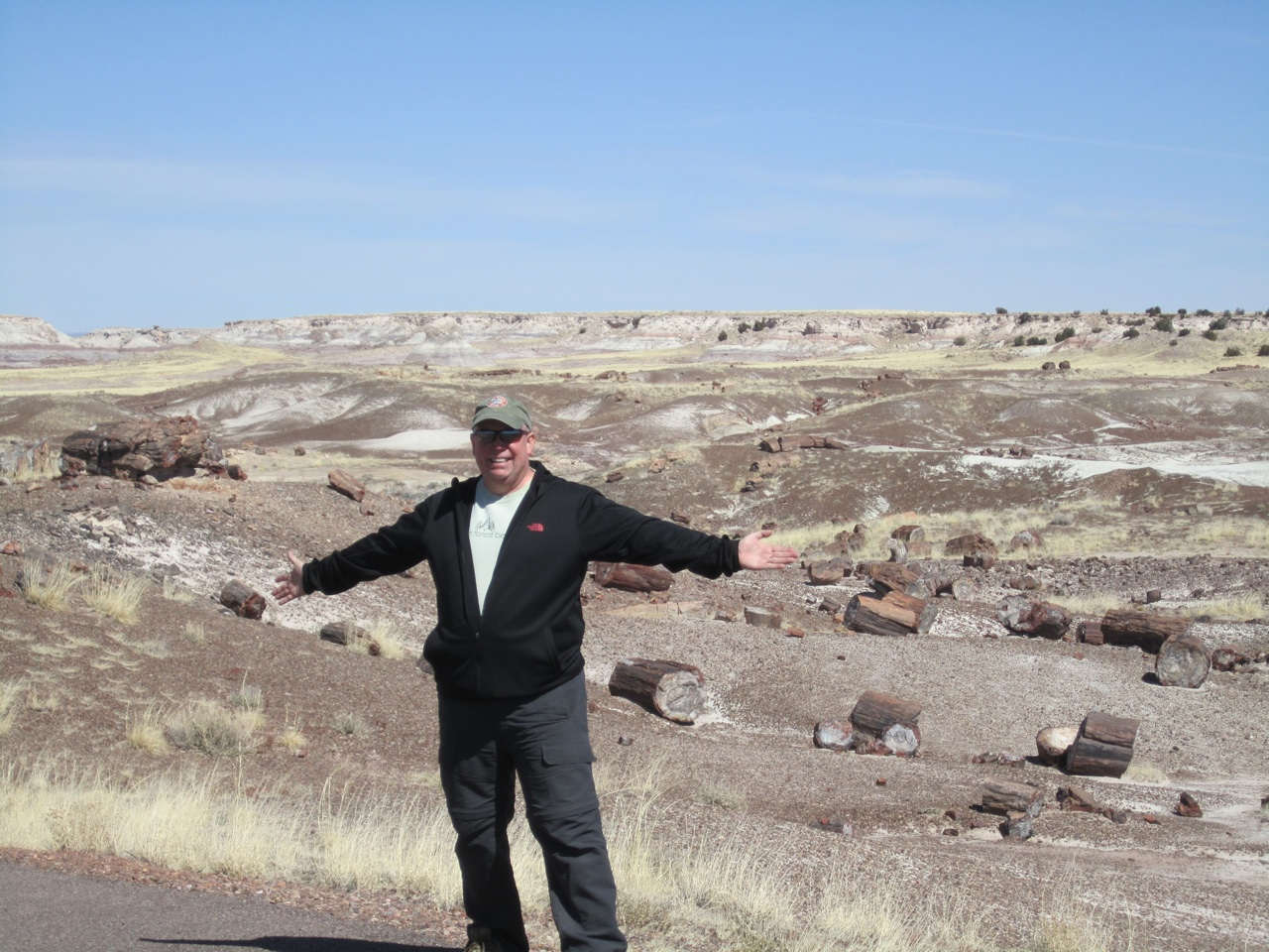 David And The Petrified Forest