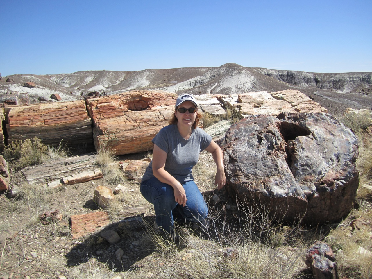 Brenda And A Petrified Log With A Tree In The Background