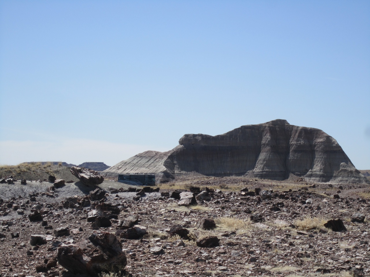 Our Motorhome In The Background Of All Scattered About Petrified Wood