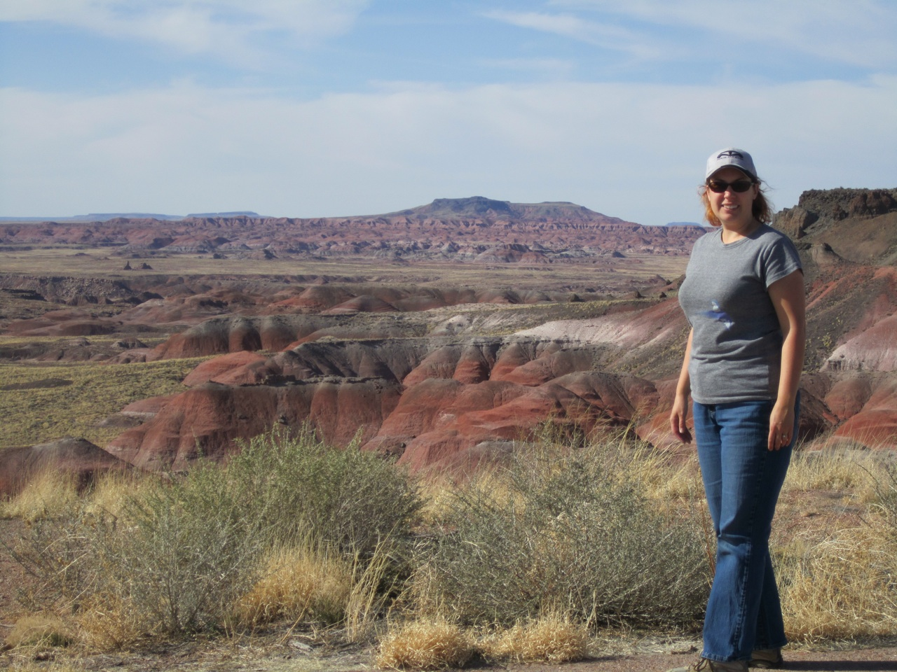 Brenda Over Looking The Painted Desert