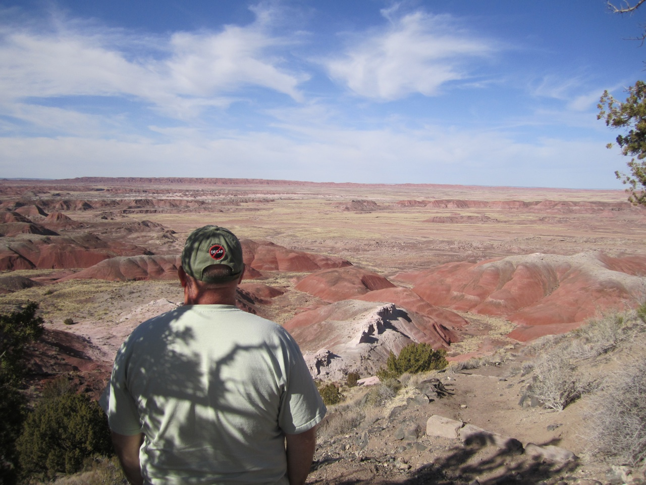 David Enjoying The View Of The Painted Desert