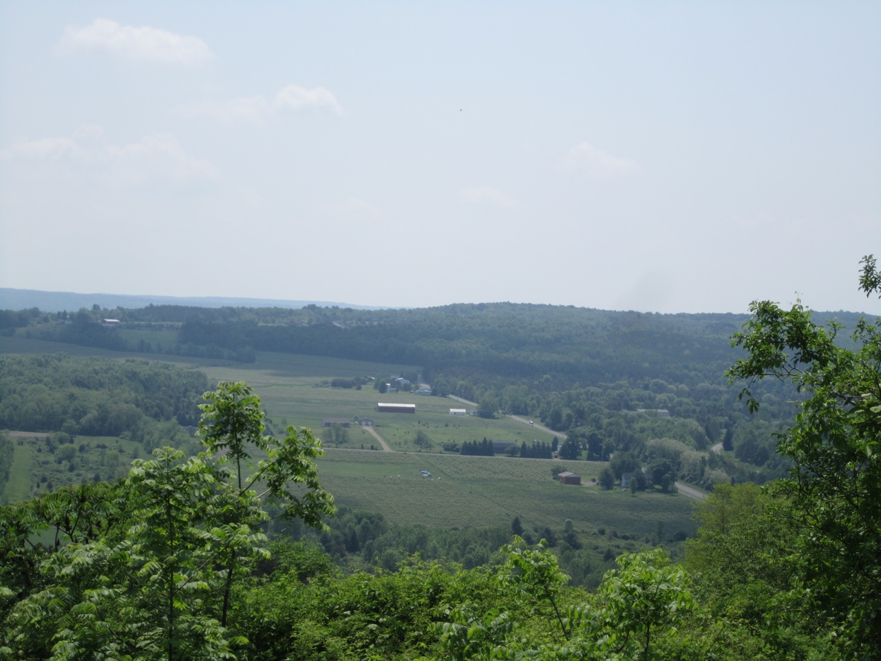 Views Of The Finger Lakes Region