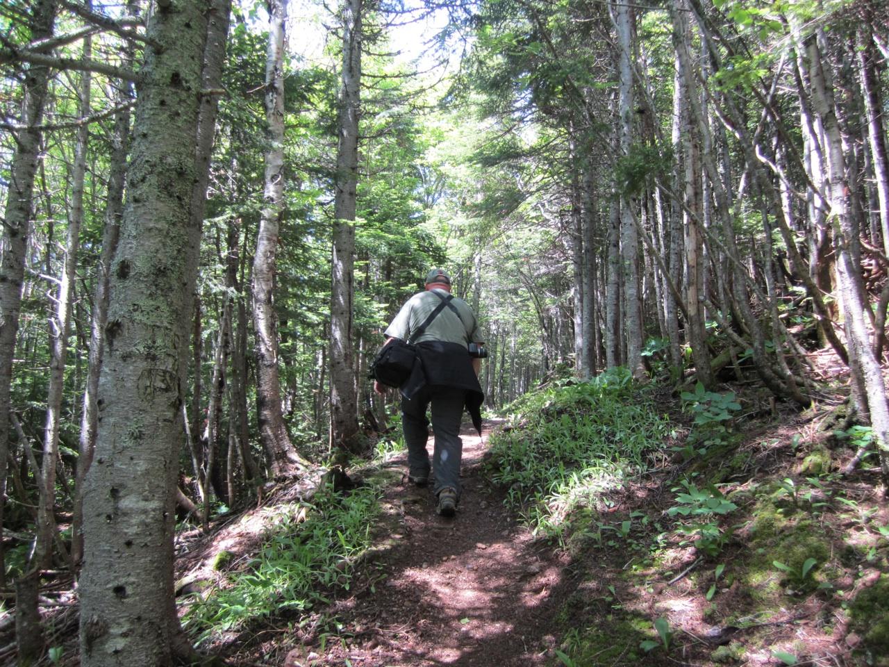 David Hiking The Trail