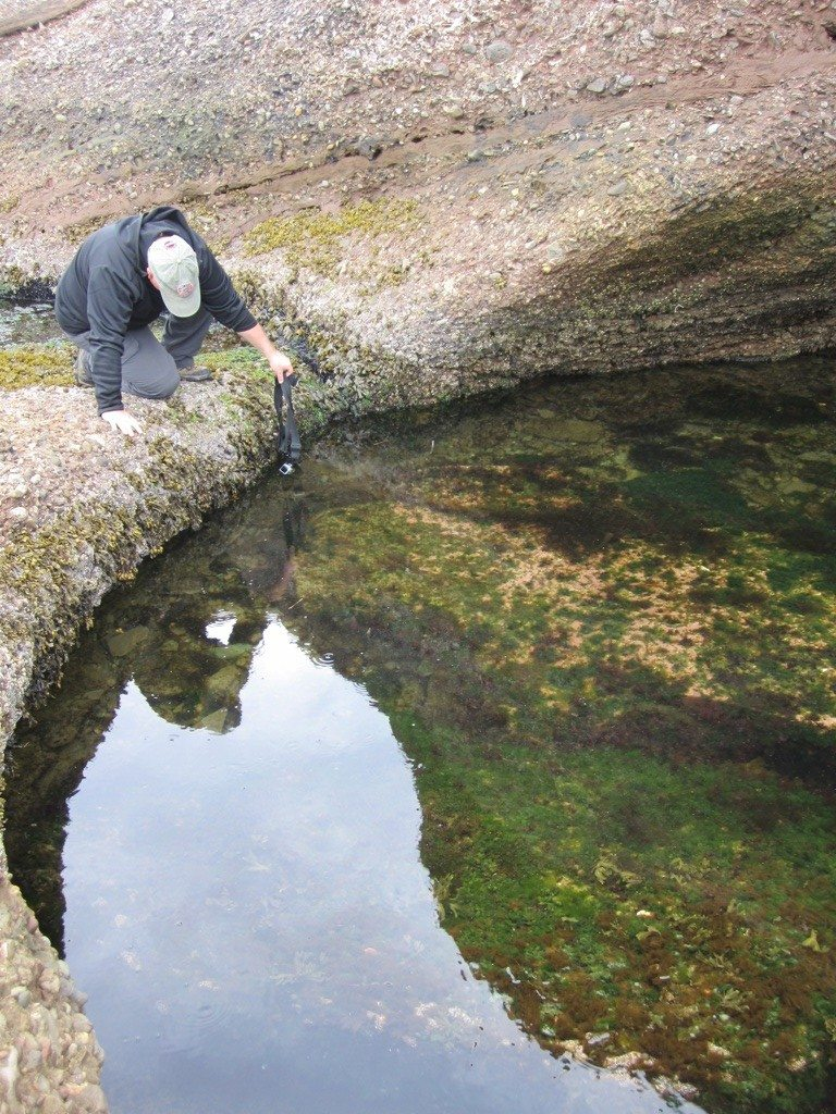 David Checking To See What Was In The Tide Pools