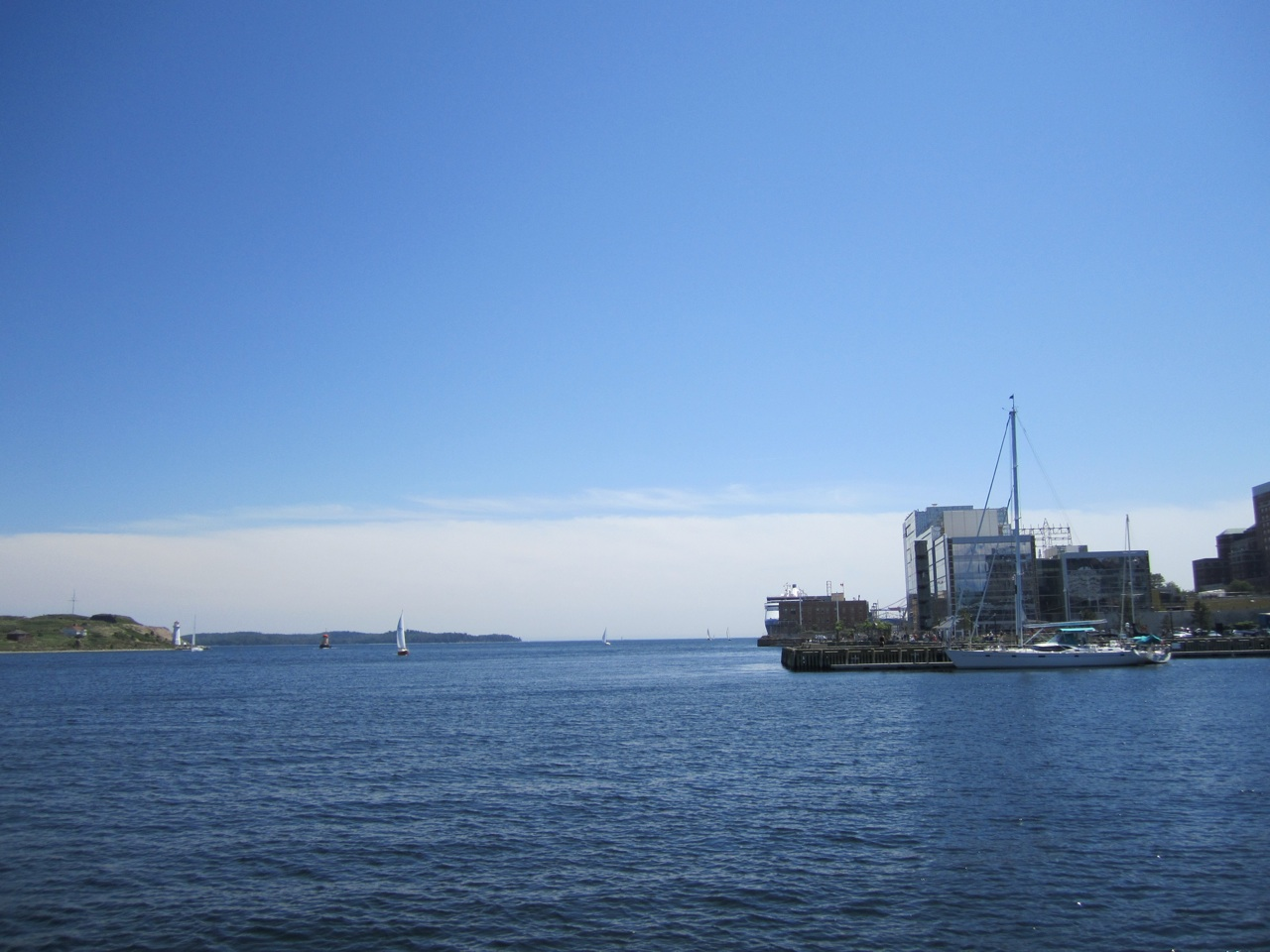 The Harbor At Halifax
