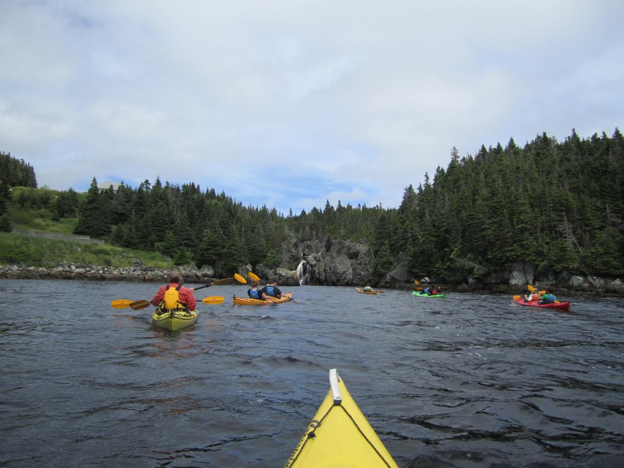 Kayaking In Cape Broyle