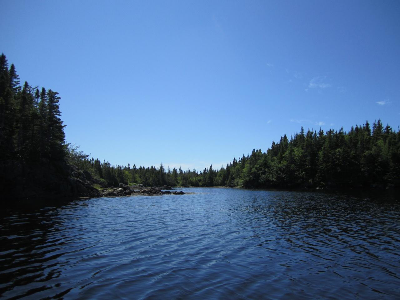 Our Kayaking Adventure