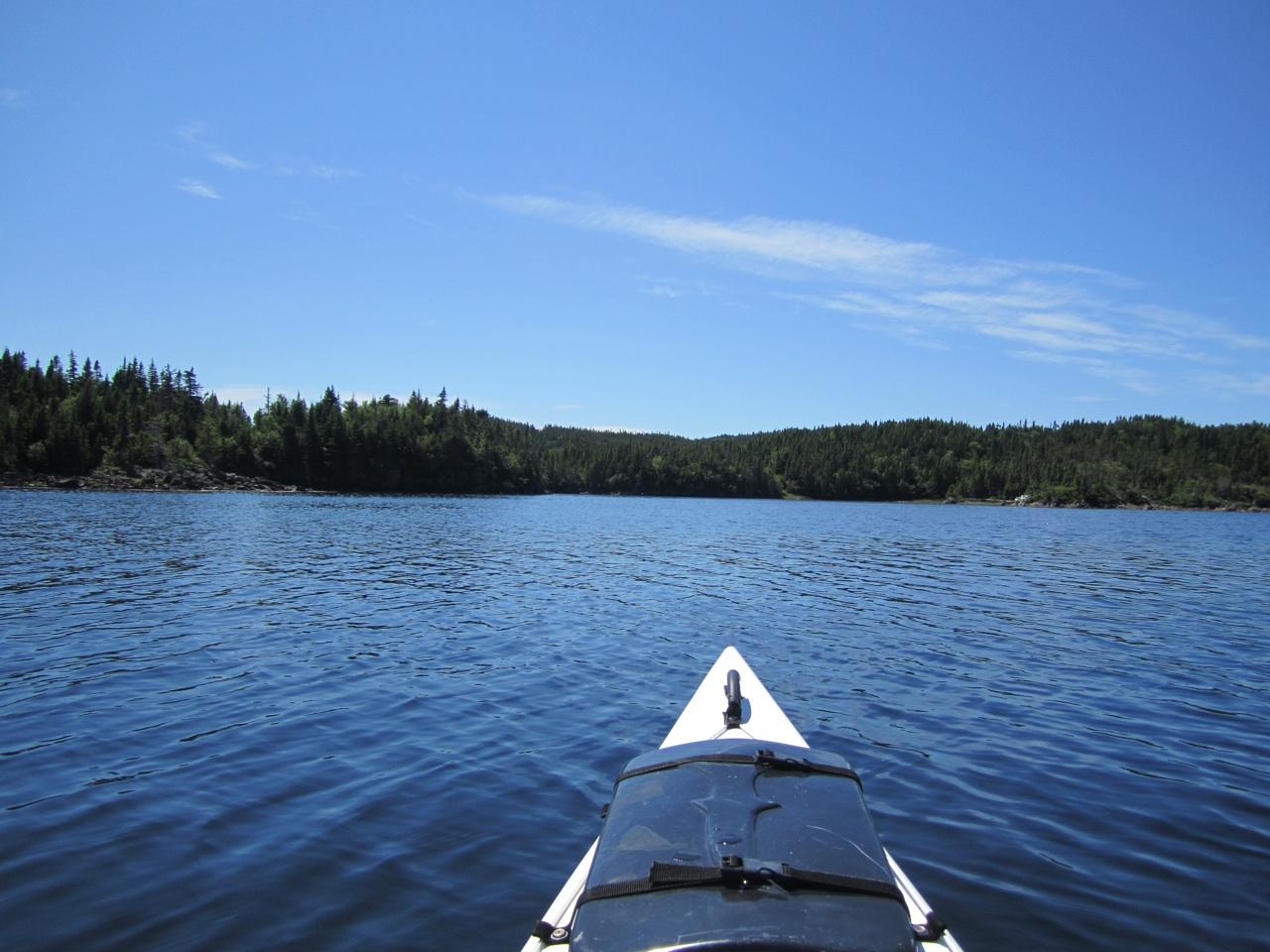Our Kayaking Adventure In Cottlesville