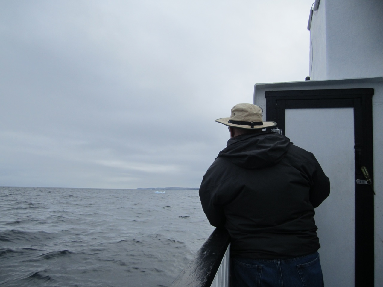 David Looking For Whales