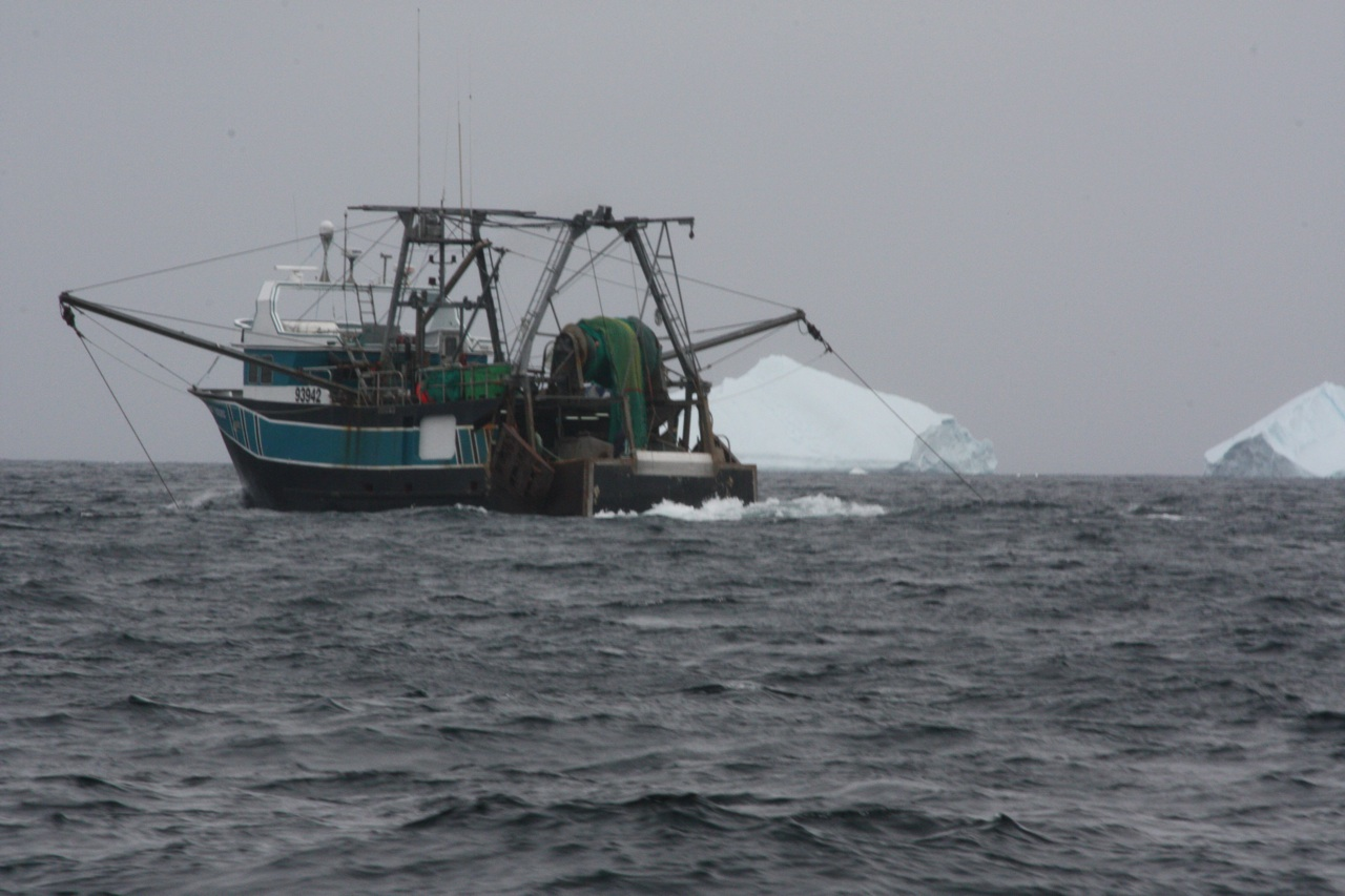 Fishing Boat With Iceberg