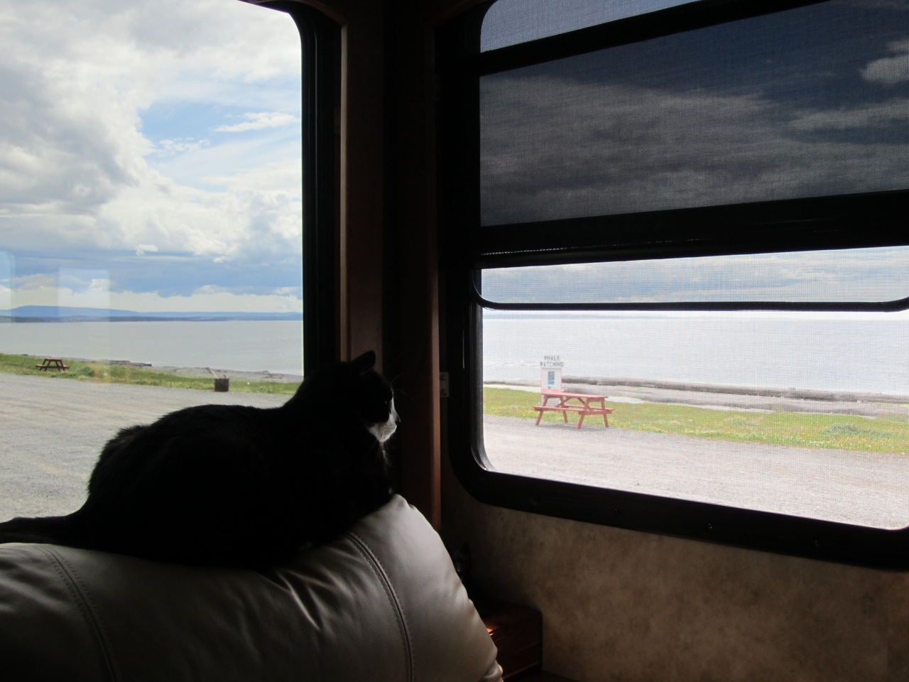 BK Enjoying The Fresh Sea Air And Wonderful View