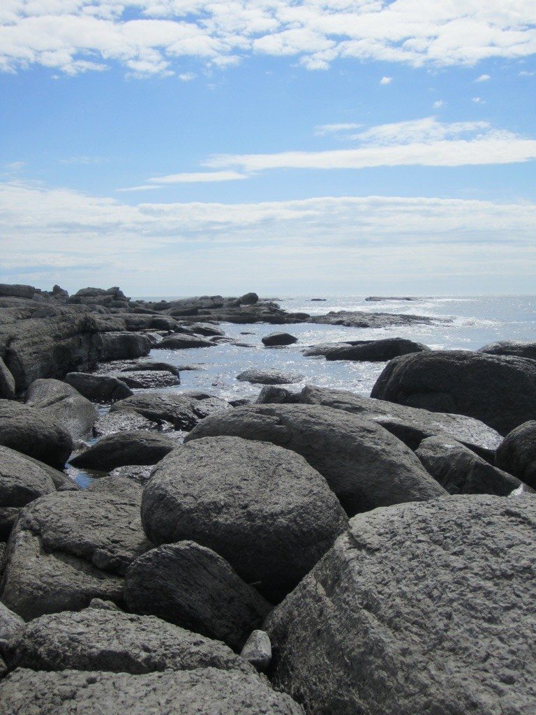The Rocky Shore At Point Riche In Port au Choix