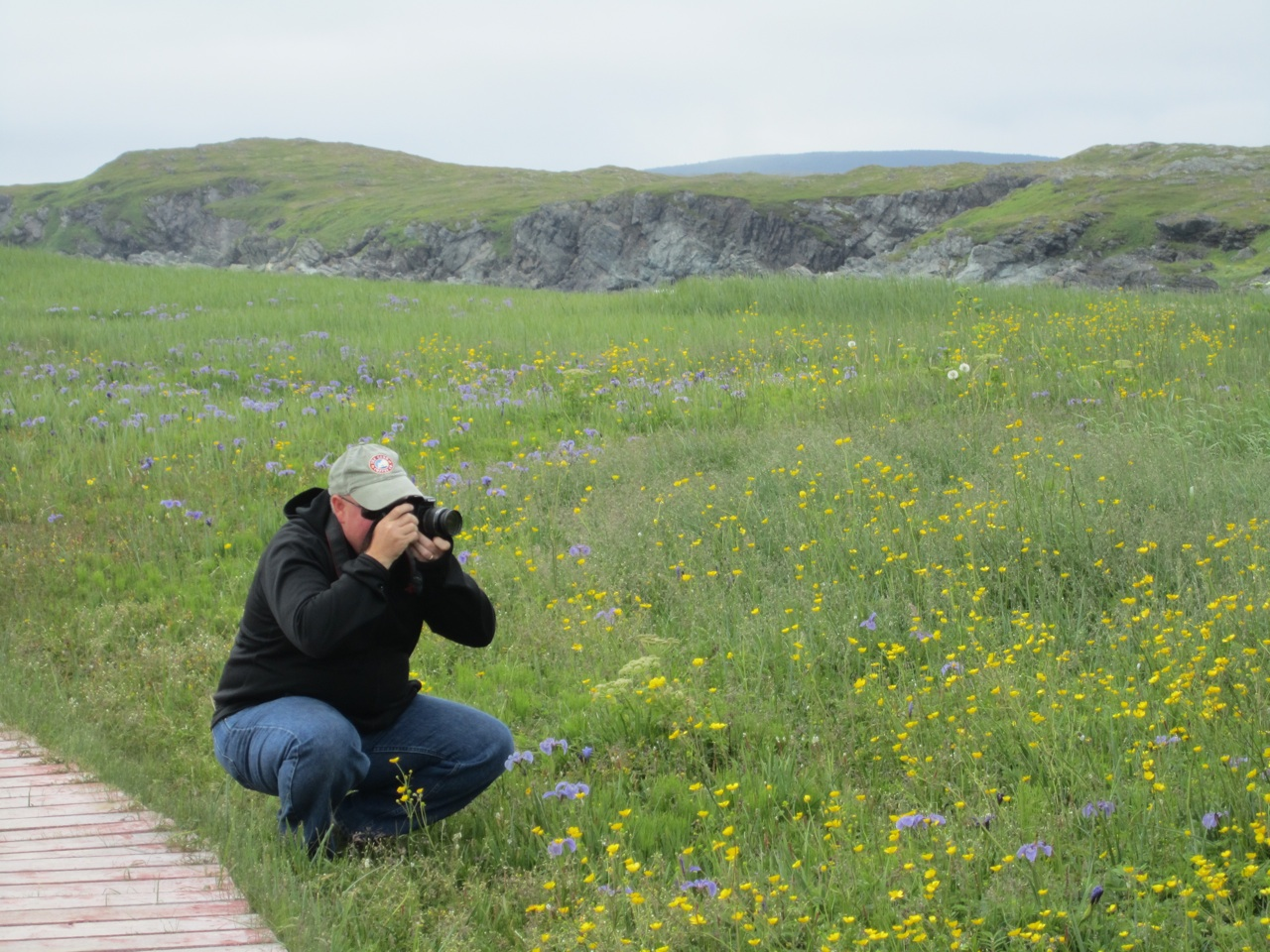 David Photographing The Wildflowers