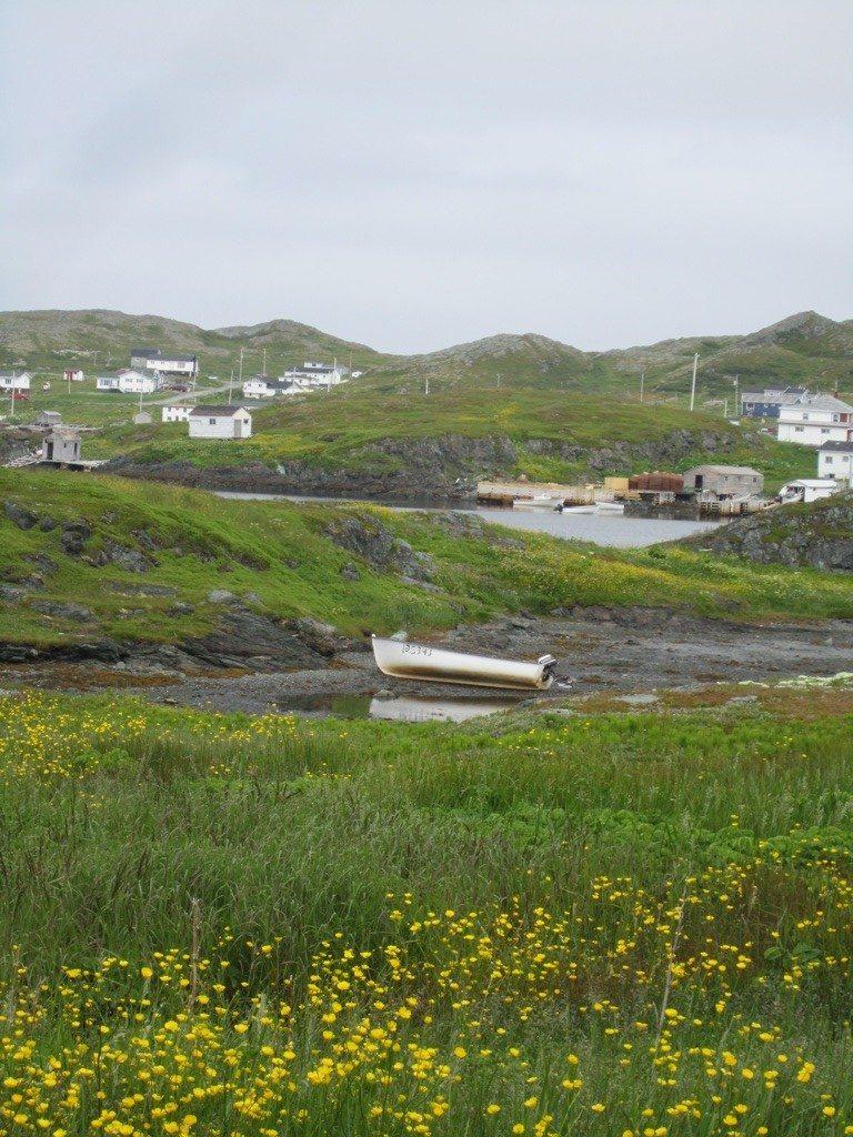 Goose Cove Bay