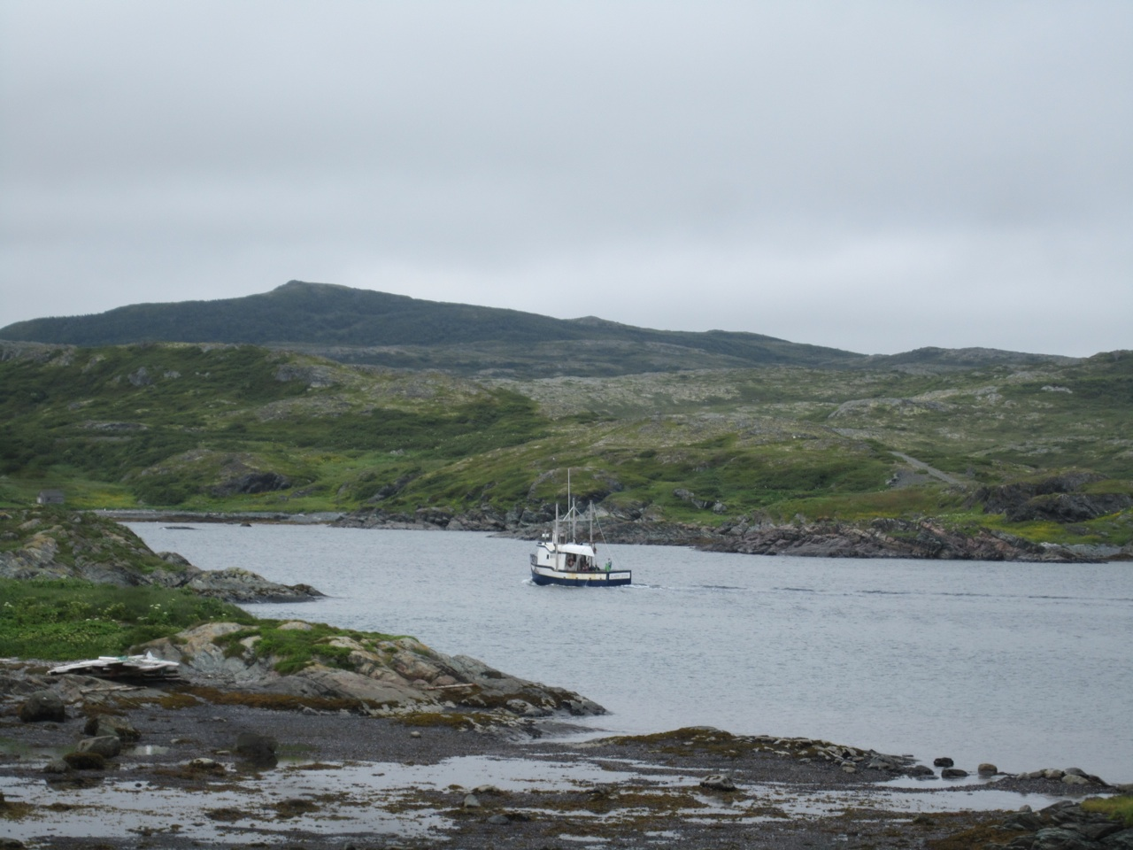 A Fishing Boat Going Out From Goose Cove Bay