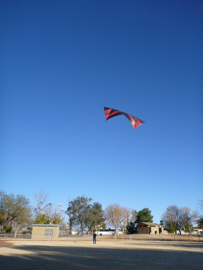 David Finally Getting To Fly His New Kite