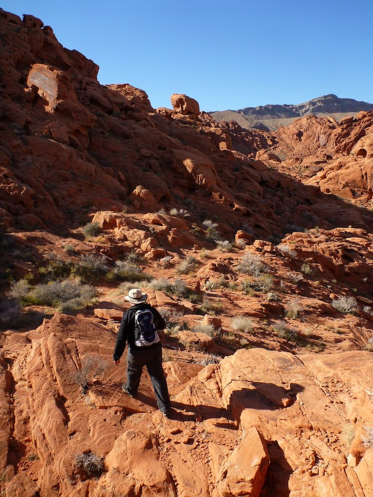 David Hiking Along The Red Rock Formations