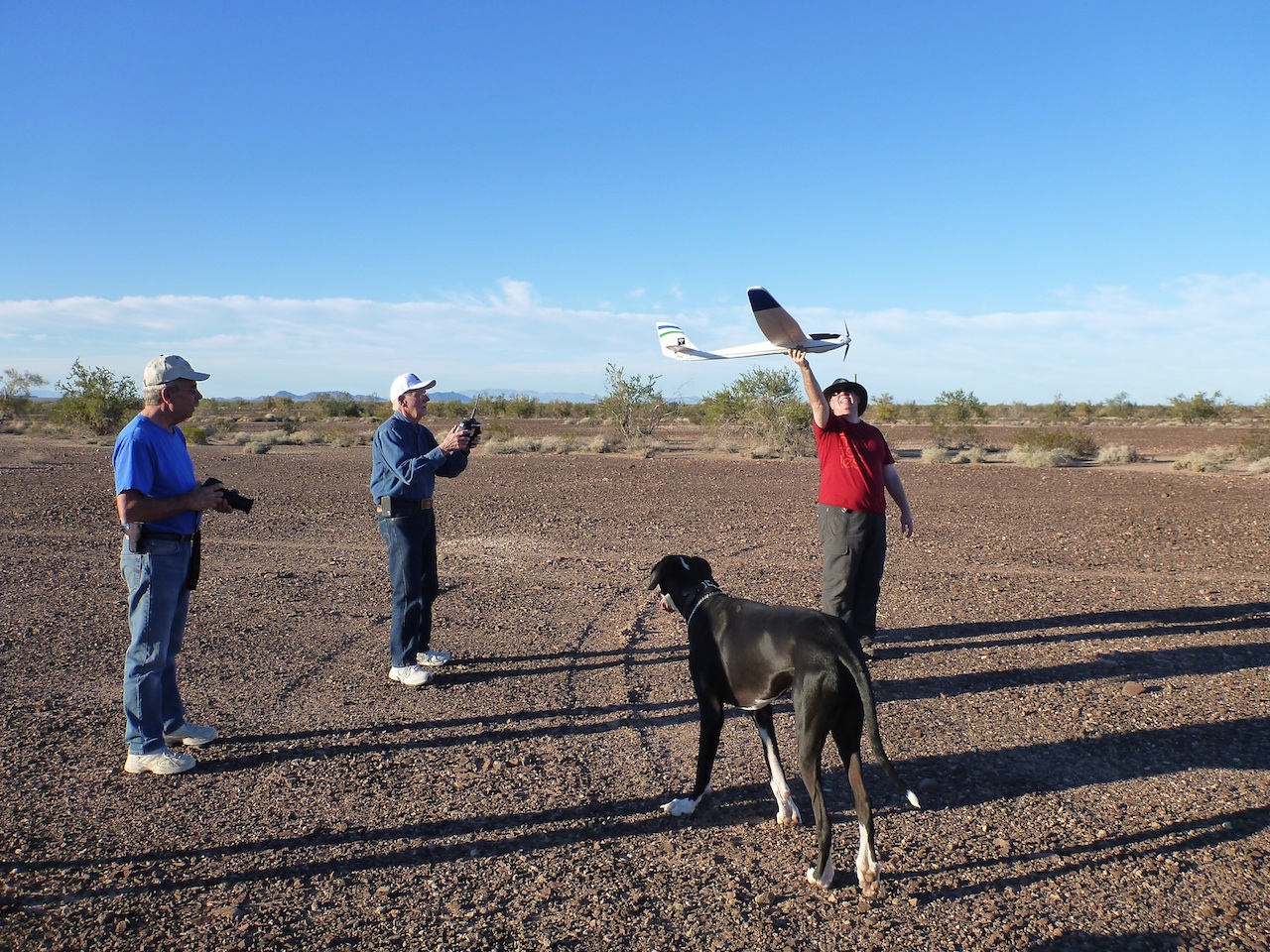 David, Dave, Ken, And Hoover The Great Dane, Took To The Skies With Dave's Airplane.