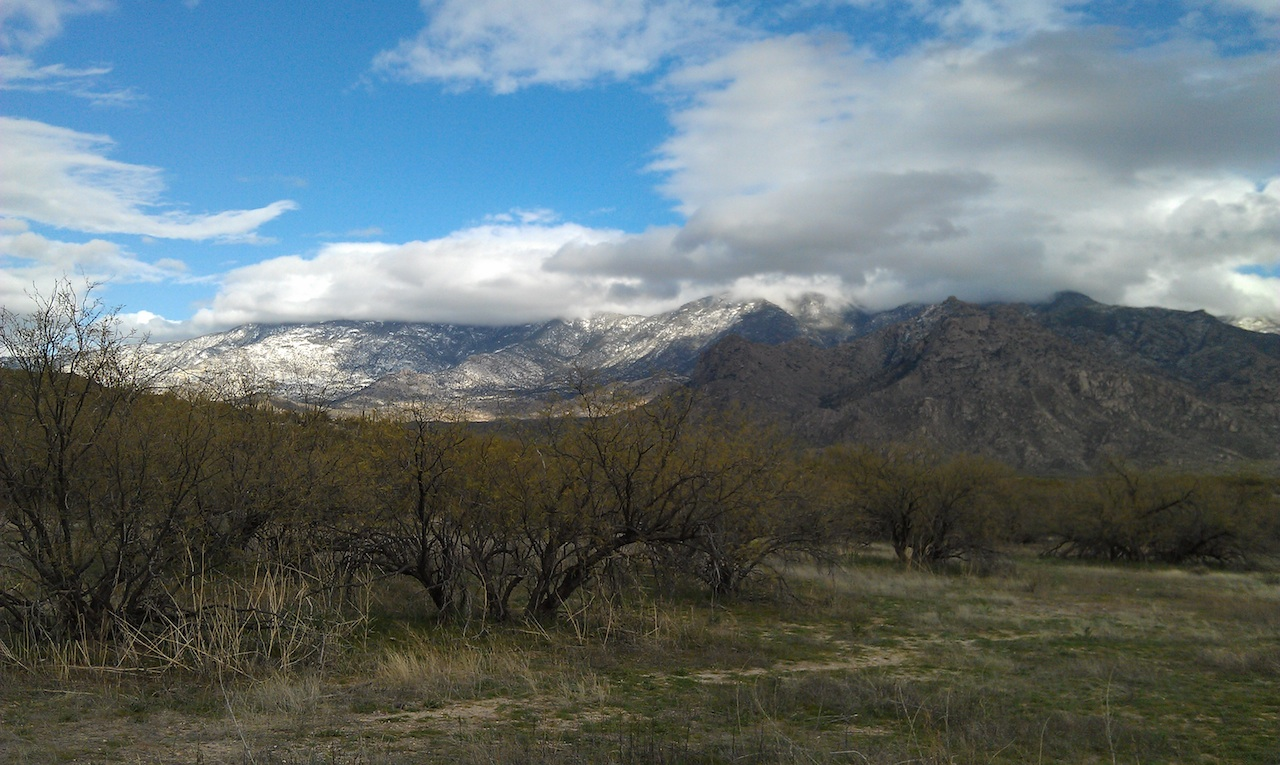 Our View From Our Site Of The Catalina Mountains In The Catalina State Park