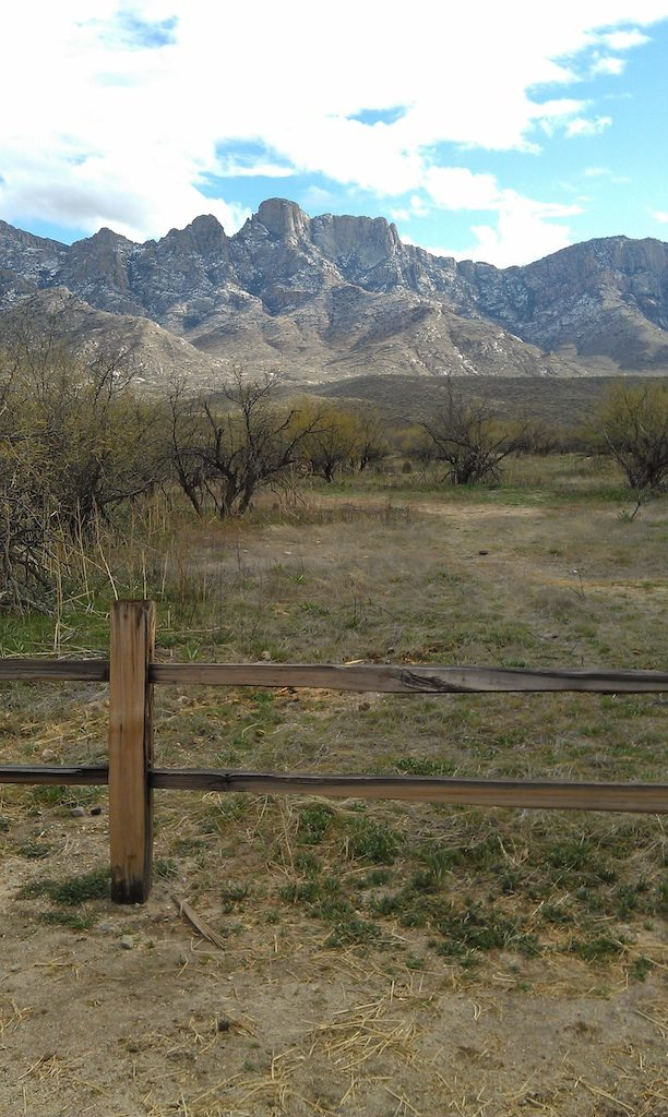 Catalina State Park Views