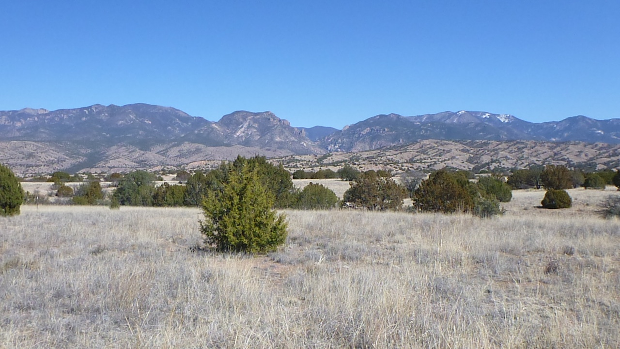 The View From The Aldo Leopold Picnic Area Of The Beginning Of The Gila National Forest.