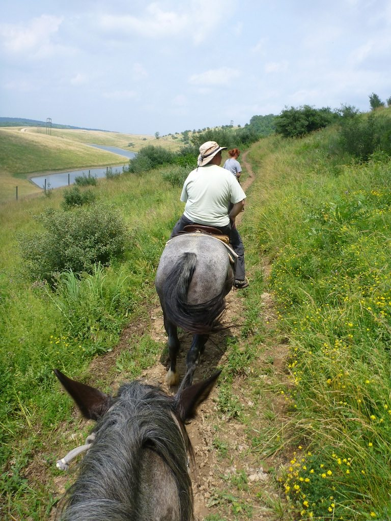 "David On The Horse Trail At The Wilds.  That's My Horse ""Levi"" Following David."