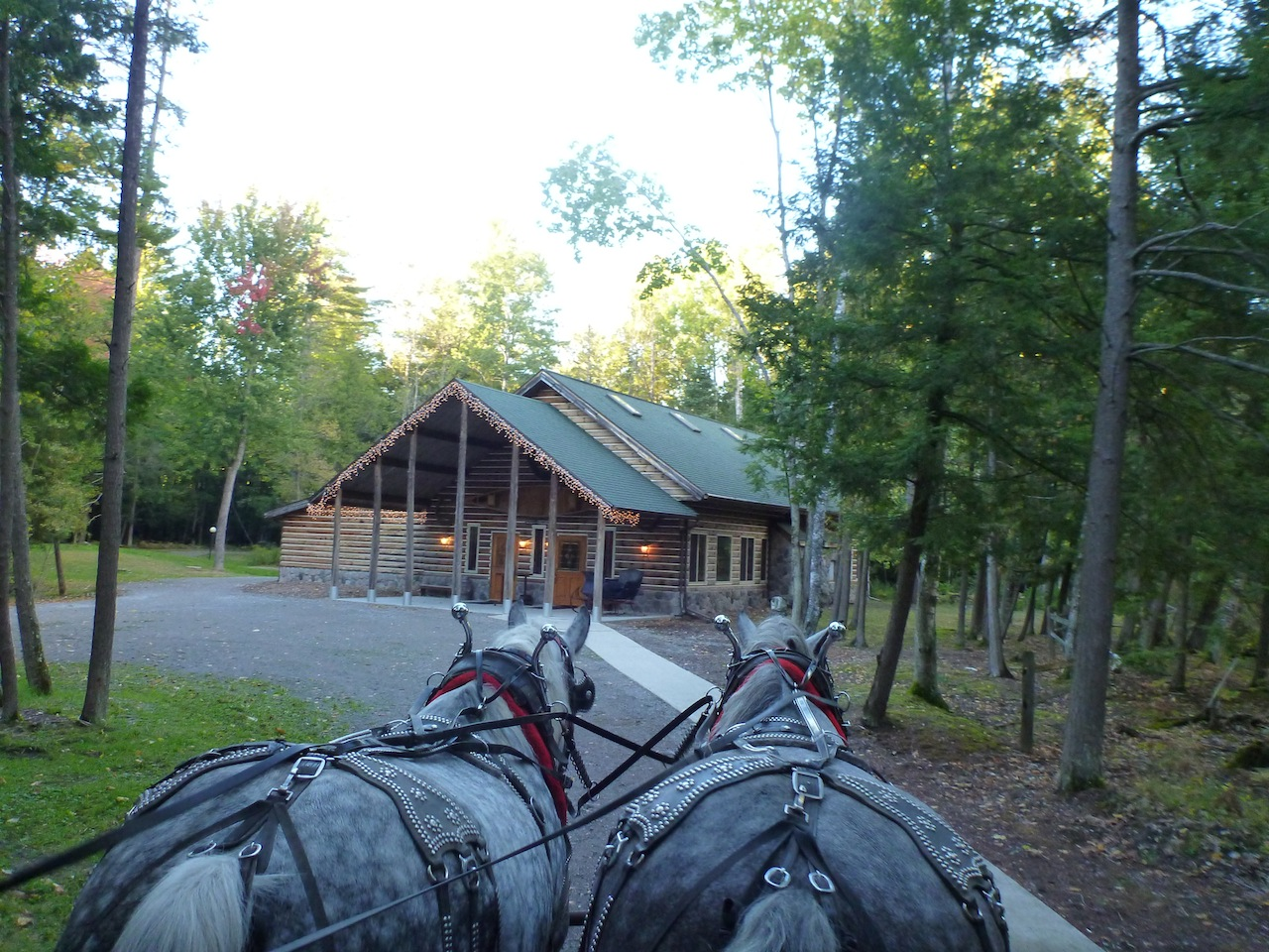 The Elk Antler Log Cabin At Thunder Bay Resort