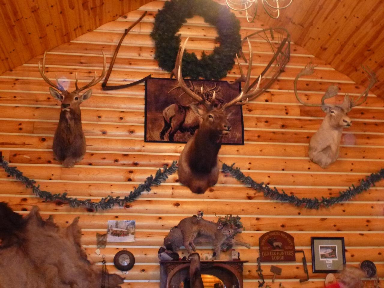 Inside The Elk Antler Log Cabin