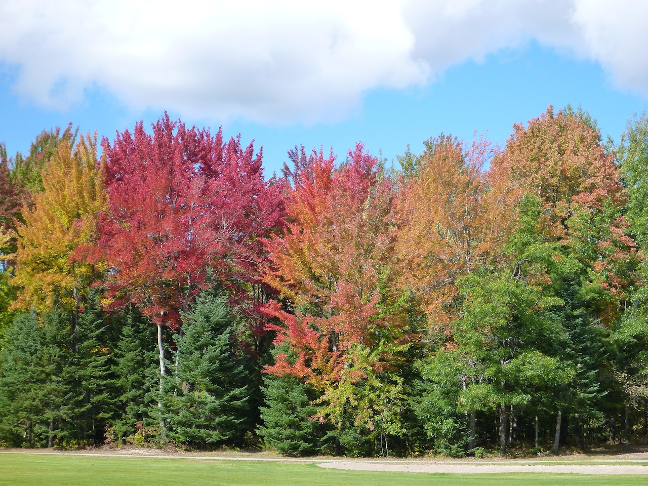 The Golf Course And The Beautiful Fall Colors At Thunder Bay Resort
