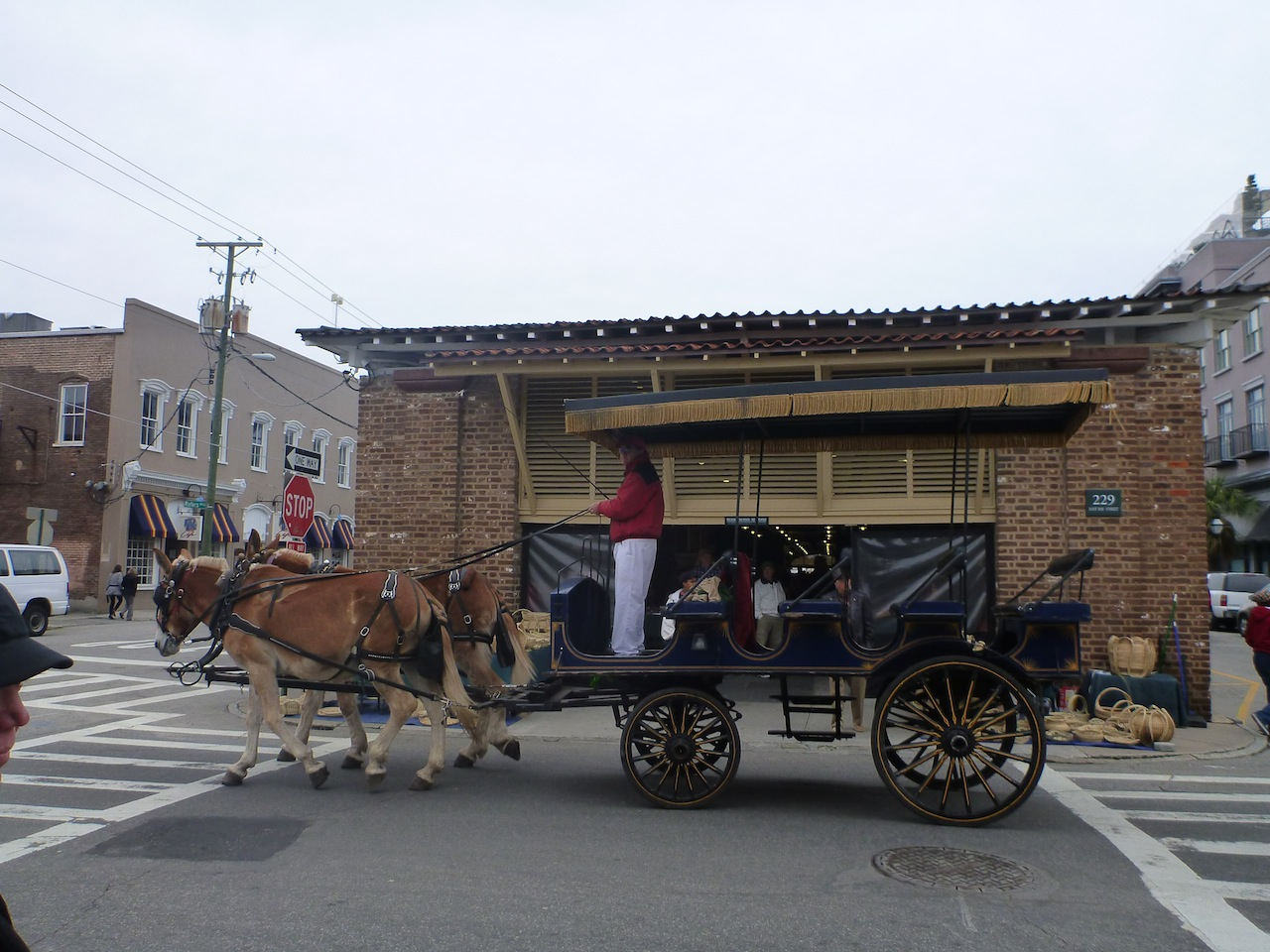 One Of The Many Horse Drawn Carriages Around Town