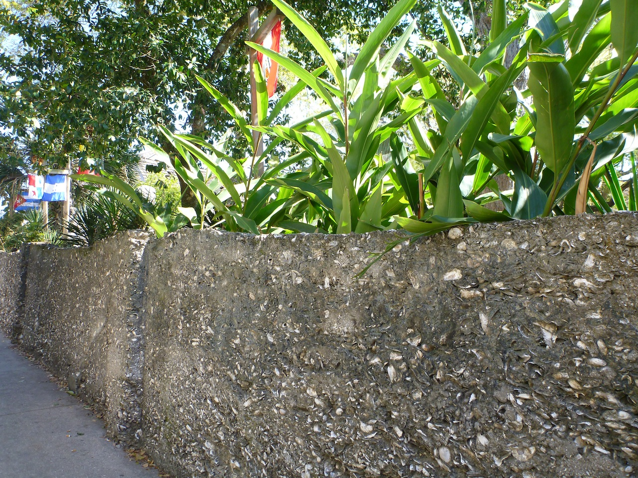The Wall Surrounding St. Augustine Was Made Of Sea Shells, Stone and Mud