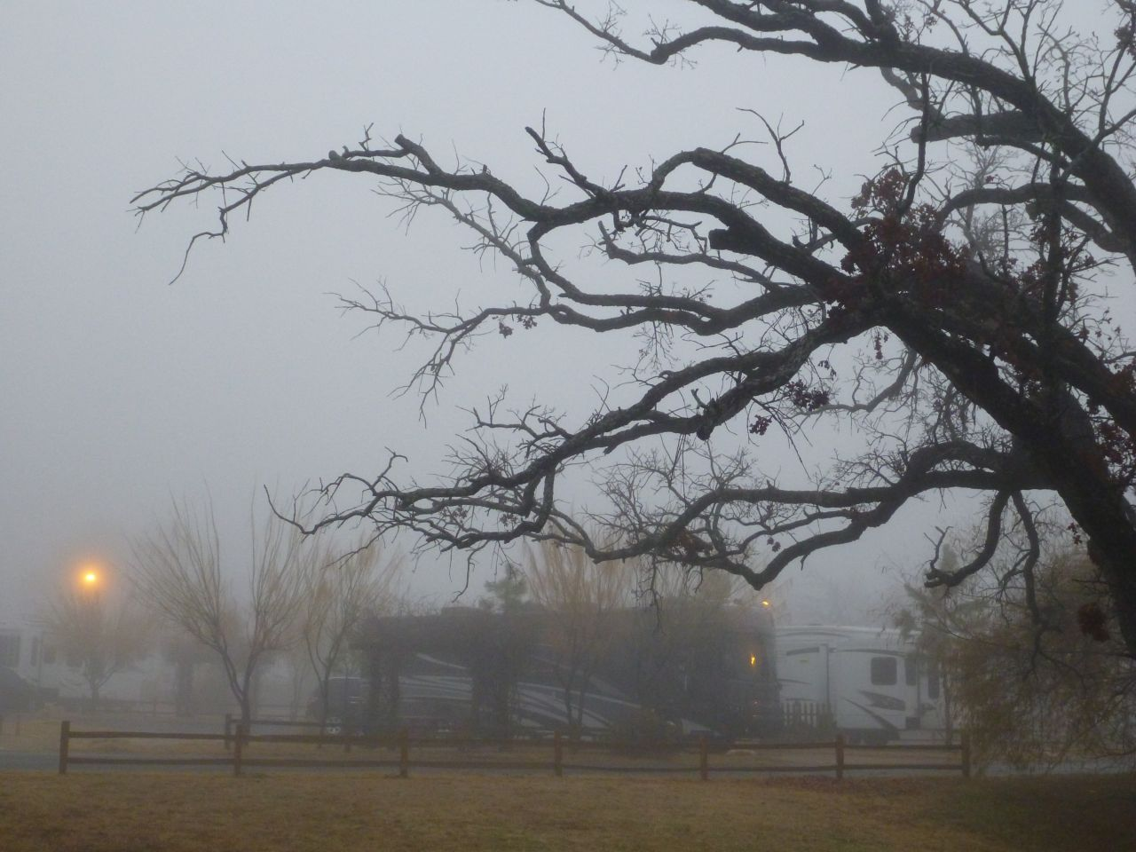 A Foggy Morning At The RV Ranch In Keene, TX