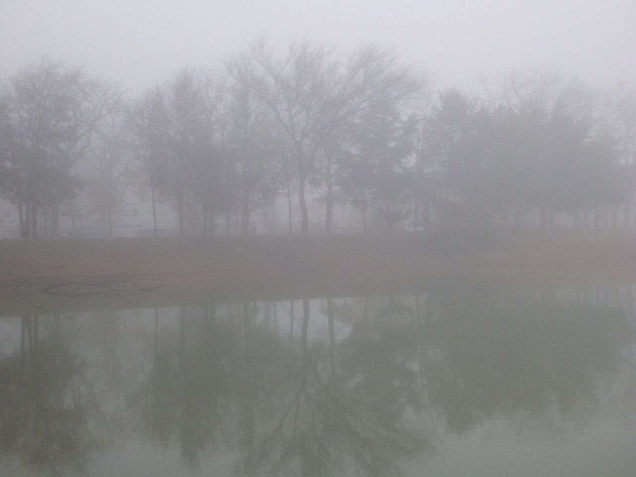 Foggy Morning At The RV Ranch In Keene, TX