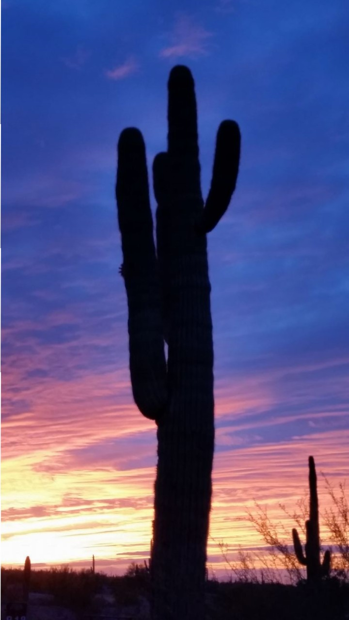 Sunset At Picacho Peak State Park